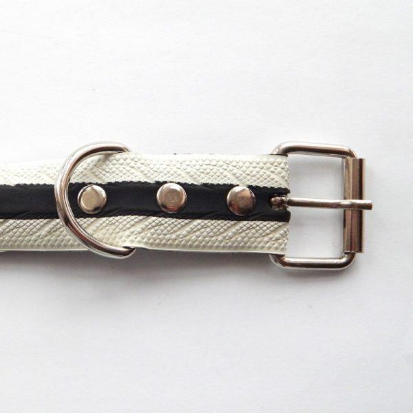 bicycle tyre dog collar